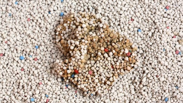 Clumping cat litter or sand