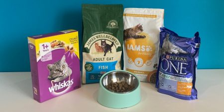 Best Dry Cat Food for Adult Cats